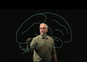 visualize, Medical Neuroscience, prof. L.E. White, Learn Medical Neuroscience
