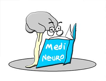 medical neuroscience study strategy