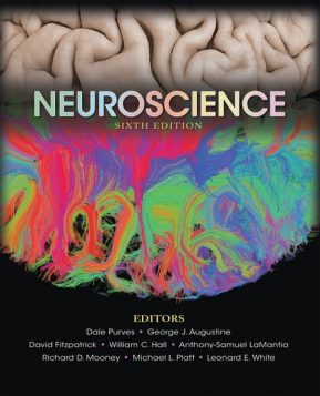 neuroscience sixth edition, edited by Dale Purves